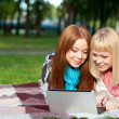 Two sisters with laptop in the park — Stockfoto