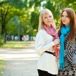 Two sisters standing in the park — Stock Photo