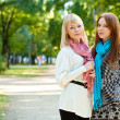 Stock Photo: Two sisters standing in the park