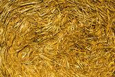 Straw (close up) — Stock Photo