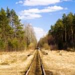 Railway rails — Stock Photo #8083722