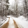 Road in the winter — Stock Photo #8327622