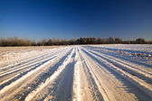 Road in the winter — Stock Photo