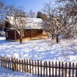 House in the winter — Stock Photo #8878510