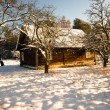 House in the winter — Stock Photo #8989929