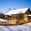 The wooden house — Stock Photo #9031187