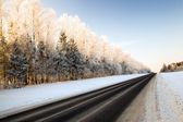 Part of winter road — Stock Photo