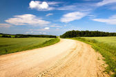 Rural road (summer) — Stock Photo