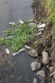 Wasserverschmutzung. — Stockfoto