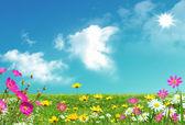 Horário de verão. — Foto Stock