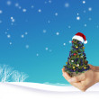 Christmas tree in hand — Stock Photo