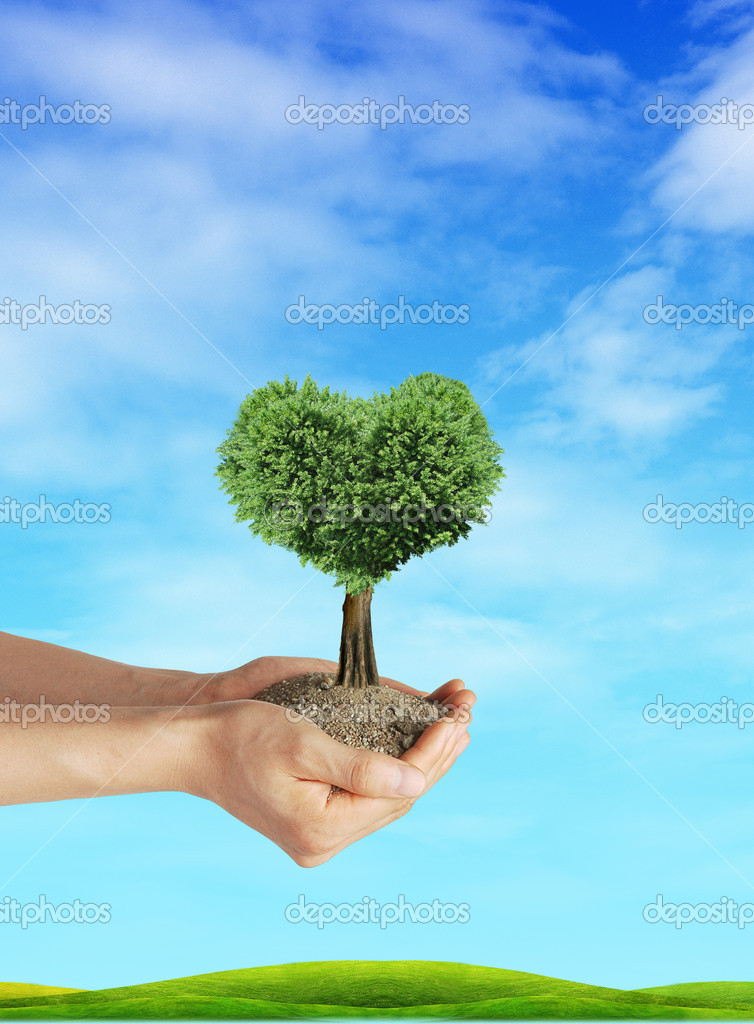 Heart tree on hand with blue background — Stock Photo #8253894