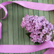 Lilac background — Foto Stock