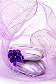 Viola spa — Foto Stock