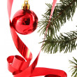 Christmas ornaments — Stock Photo #8028487