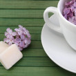 Lilac morning — Stock Photo