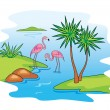 Pink Flamingo. — Stock Vector