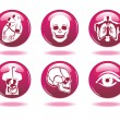 Set of medical icons. - Stock Vector