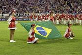 巴西国旗 — 图库照片