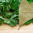 Heart shaped bay leaf — Stock Photo