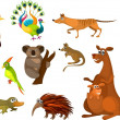 Australian animals — Stock Vector