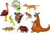 Australian animals — Stock Vector