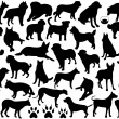 Royalty-Free Stock Vectorielle: Dogs silhouette collage
