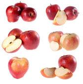 Jabłko, czerwony — Zdjęcie stockowe