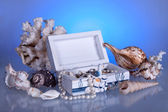 Box with seashells, coral and pearls — Foto de Stock