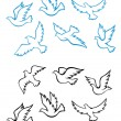 Pigeons And Doves Birds — Stock Vector #10059524