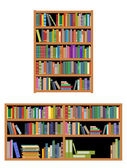 Horizontal and vertical bookshelf — Stock Vector
