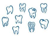 Insan dişleri seti — Stok Vektör