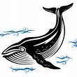 Stock Vector: Big whale