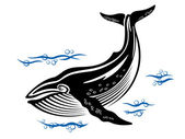 Big whale — Stock Vector