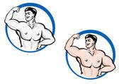 Powerful bodybuilder — Stock Vector