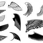 Satz von heraldischen Flügel — Stockvektor  #8522487