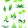 Bright green leaves symbols — Stock Vector