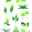 Stock Vector: Bright green leaves symbols