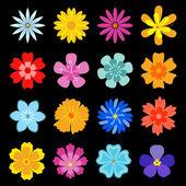Set of flower blossoms — Stock Vector