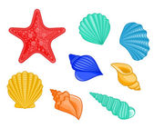 Seashells and sea star — Stock Vector