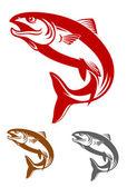 Mascotte saumon — Vecteur