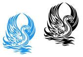 Cygne de natation — Vecteur