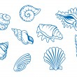 Set of ocean seashells — Imagen vectorial