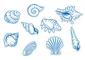 Set of ocean seashells — Stock Vector