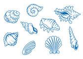 Set of ocean seashells — Stock Vector