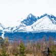 Tatra mountains in spring - Stock Photo