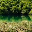 Plitvice Lakes National Park in Croatia, beautiful landscape — Foto Stock