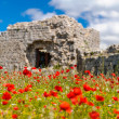Old construction on a poppies field — Stock Photo