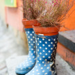 Rubber boots and flowerpot outdoors - Stock Photo