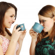 Friends drinking tea - Stock Photo